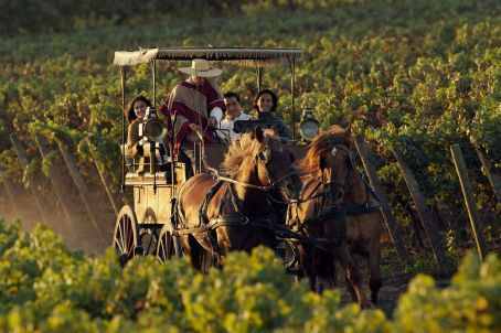 HORSE_CARRIAGE_TOUR_preview